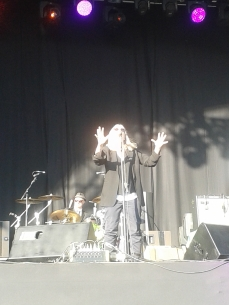 "Patti Smith "" The sun is not yellow. It is CHICKEN!"" ""I never did anything perfect...I just fucked-up perfect"""